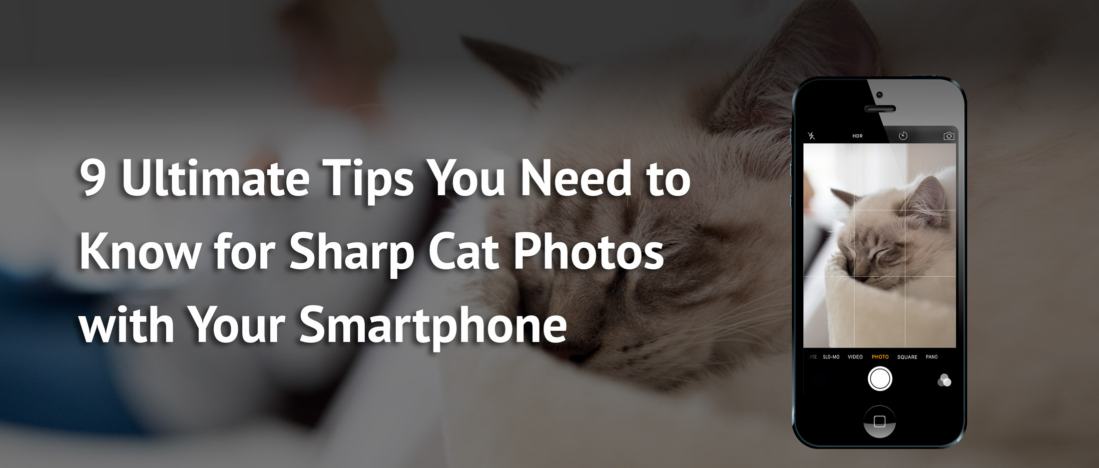 the best and ultimate tips for taking sharp pictures with your smartphone or iPhone