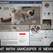 s it possible to make our ragdoll kitten famous online or to make money with your cat